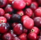 arandano rojo
